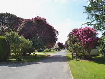 ROSECRADDOC HOLIDAY VILLAGE